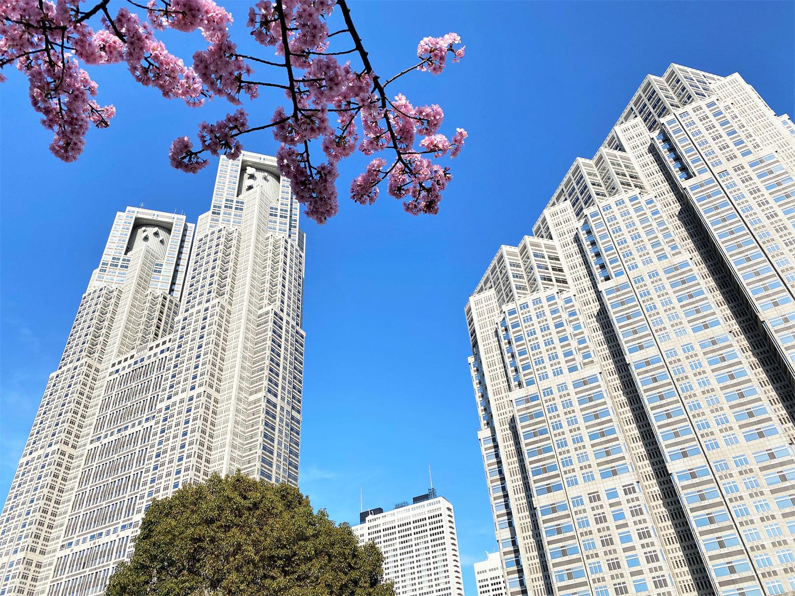 【募集情報】都営住宅の定期募集について 2021年5月(令和3年)